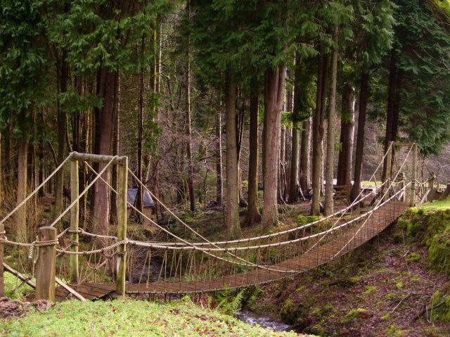 rope bridge today