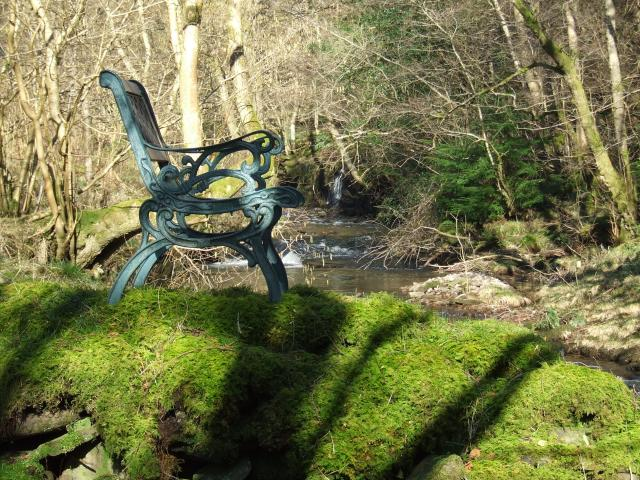 single bench by the river