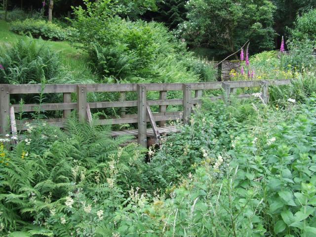 Bridge number 1 hidden in the foliage