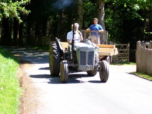 Ian & Martin carting timber for the pond
