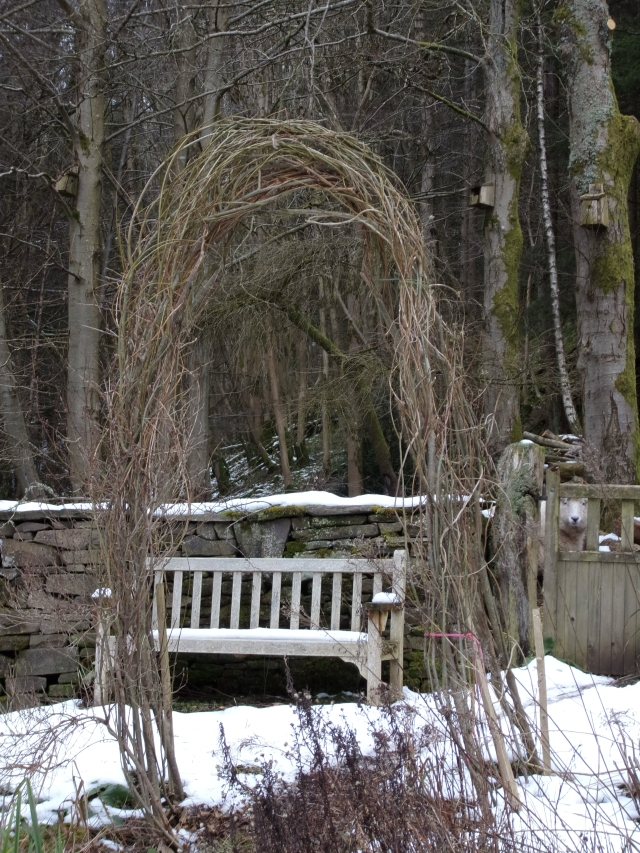 Willow arch