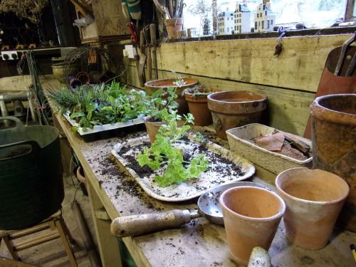work in progress in the potting shed