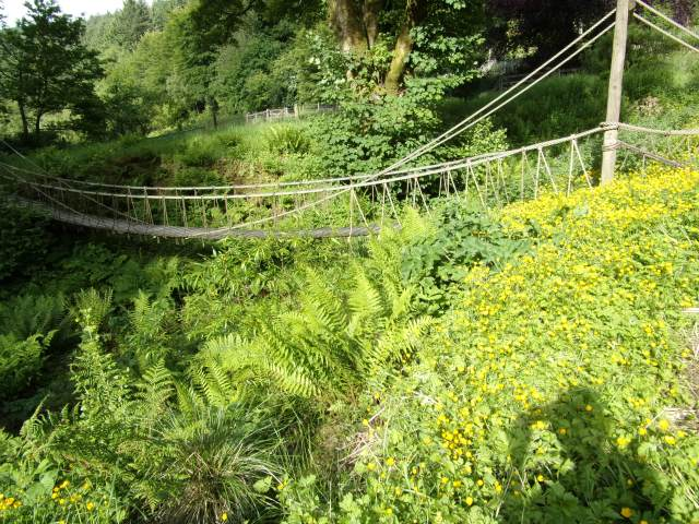 the famous rope bridge