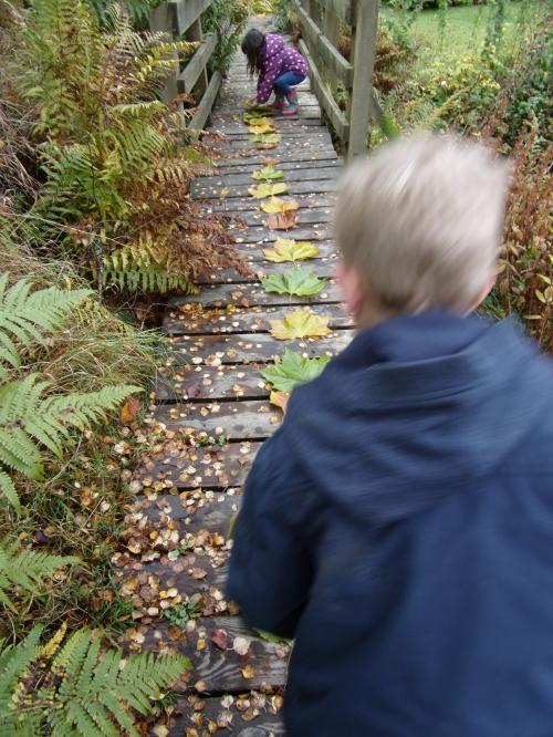making a leaf trail