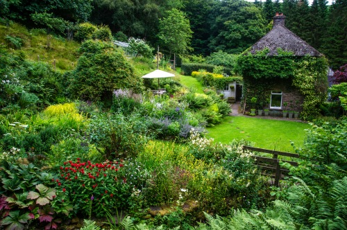 "Looking across the ""Cottage garden"""
