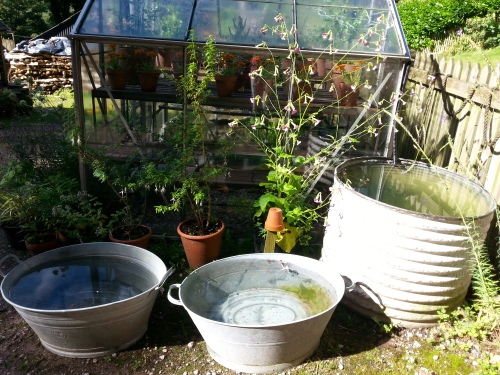 rainwater harvesting in various up-cycled baths and barrels