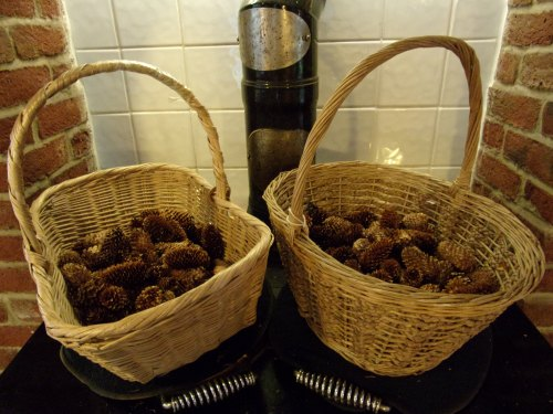 baskets of Sitka spruce cones