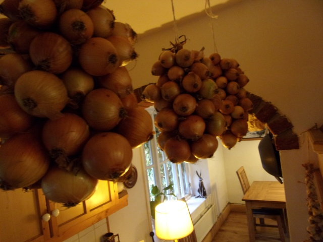 2016 strings of onions in the kitchen